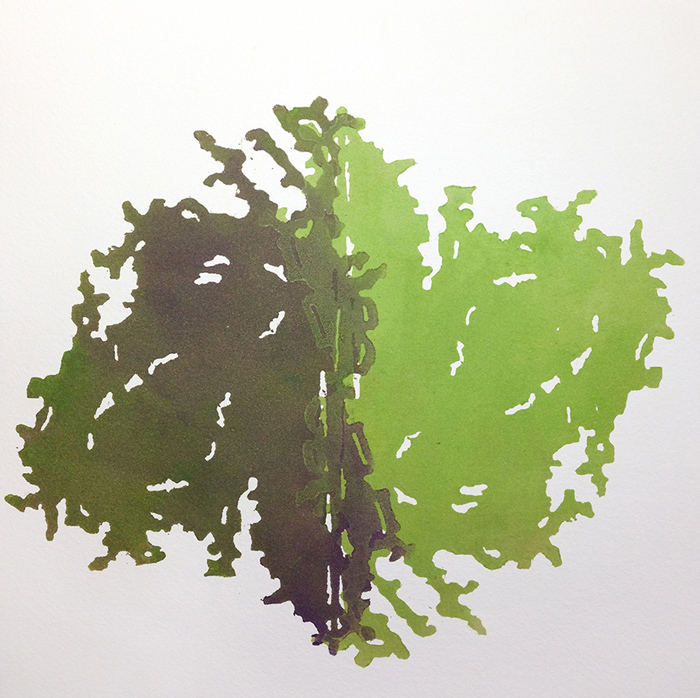 elise-whittemore-algae-2
