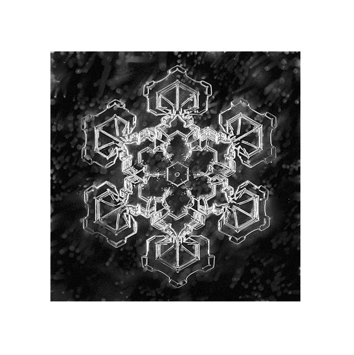 stuart-hall-snowflake-214